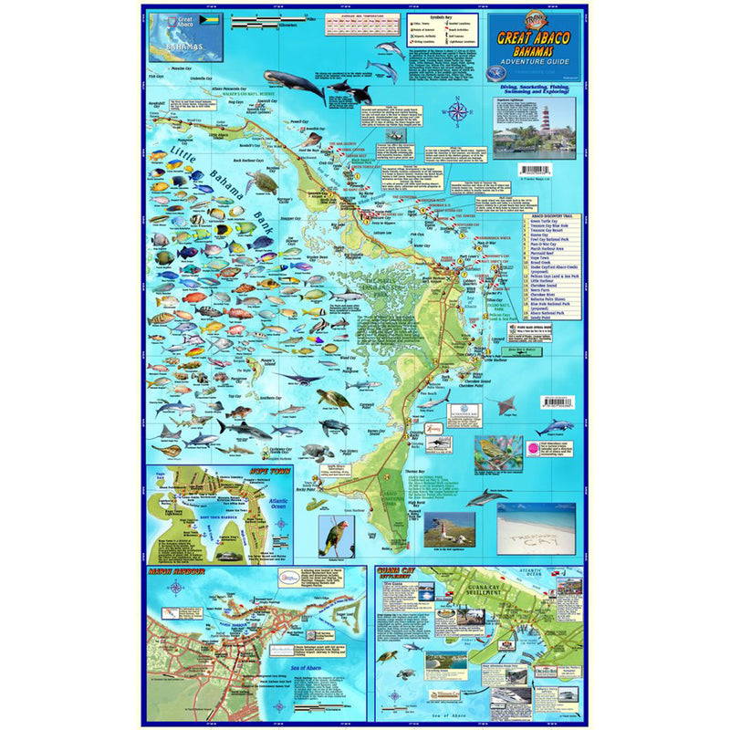 Franko Maps Great Abaco Bahamas Dive Creature Guide 16 X 26 Inch