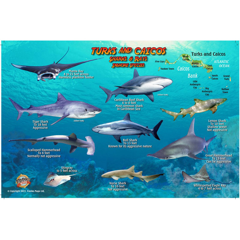 Franko Maps Turks & Caicos Sharks Rays Creature Guide 5.5 X 8.5 Inch