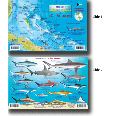 Franko Maps Bahamas Sharks Rays Creature Guide 5.5 X 8.5 Inch