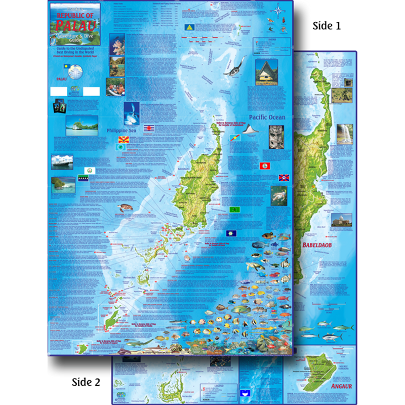 Franko Maps Republic of Palau Dive Creature Guide 18 X 26 Inch