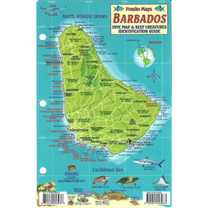 Franko Maps Barbados Reef Dive Creature Guide 4 X 6 Inch