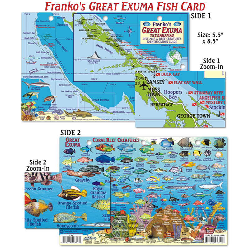 Franko Maps Great Exuma Island Reef Dive Creature Guide 5.5 X 8.5 Inch