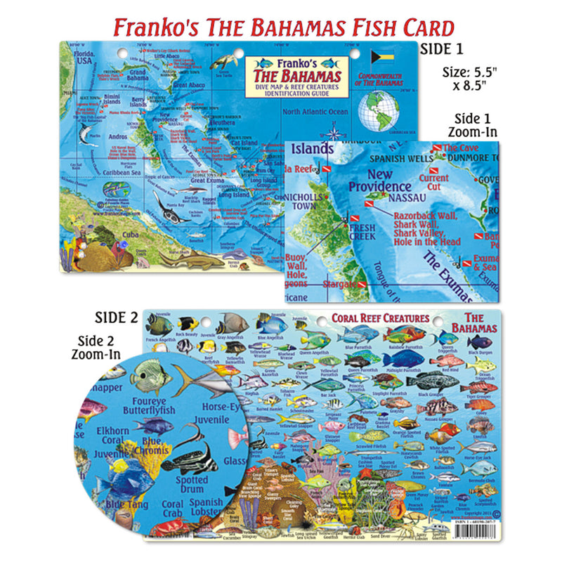 Franko Maps Bahamas Coral Reef Dive Creature Guide 5.5 X 8.5 Inch