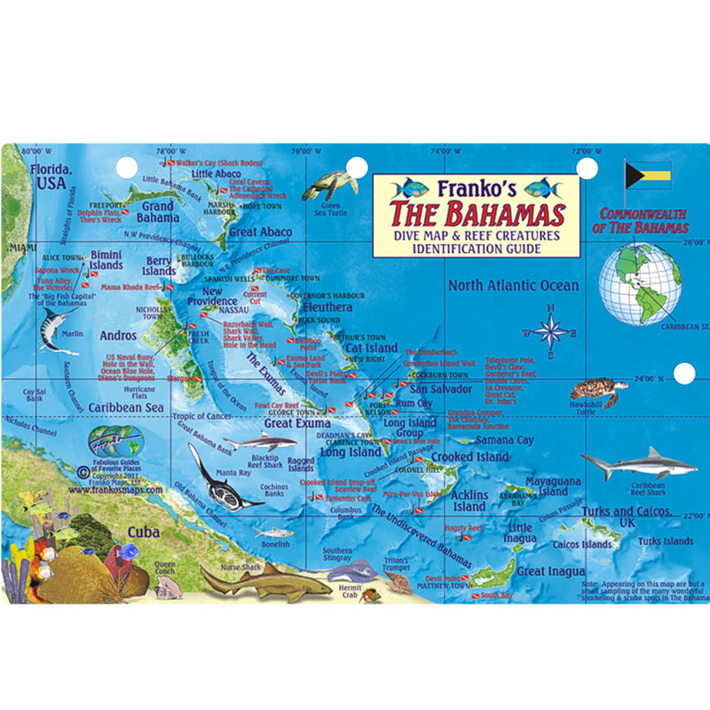 Franko Maps Bahamas Reef Creatures Card