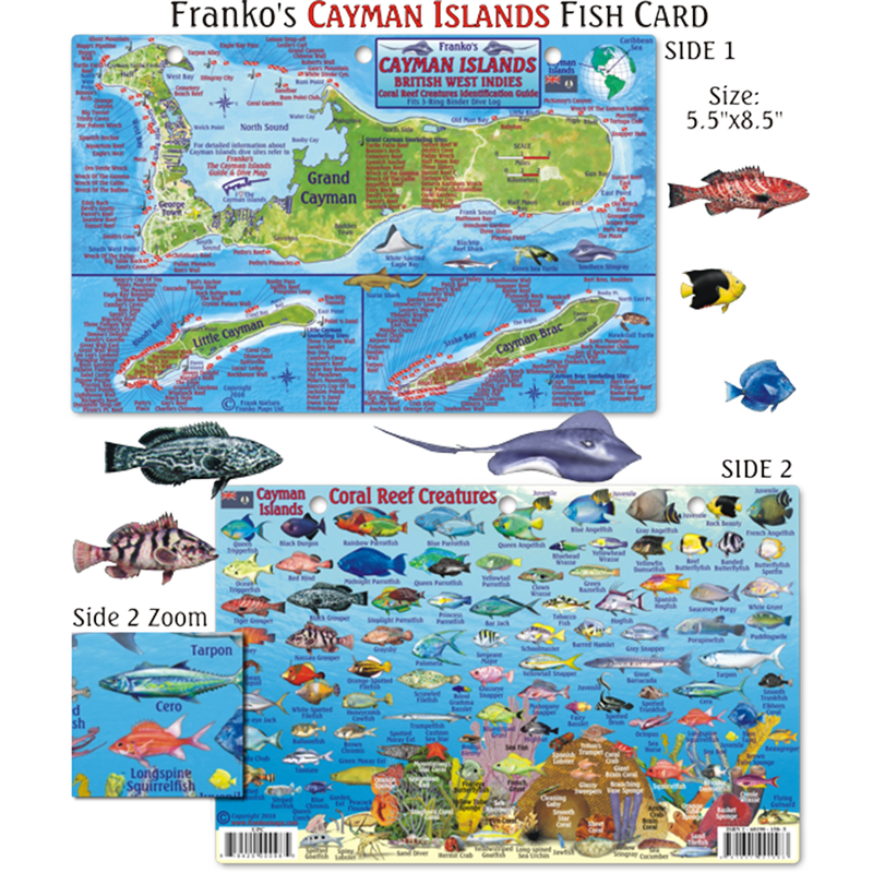 Franko Maps Cayman Islands Reef Dive Creature Guide 5.5 X 8.5 Inch