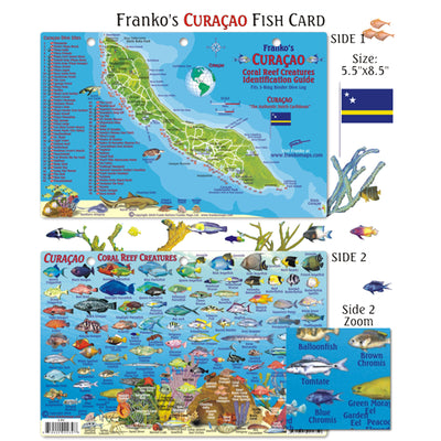 Franko Maps Curacao Reef Dive Creature Guide 5.5 X 8.5 Inch
