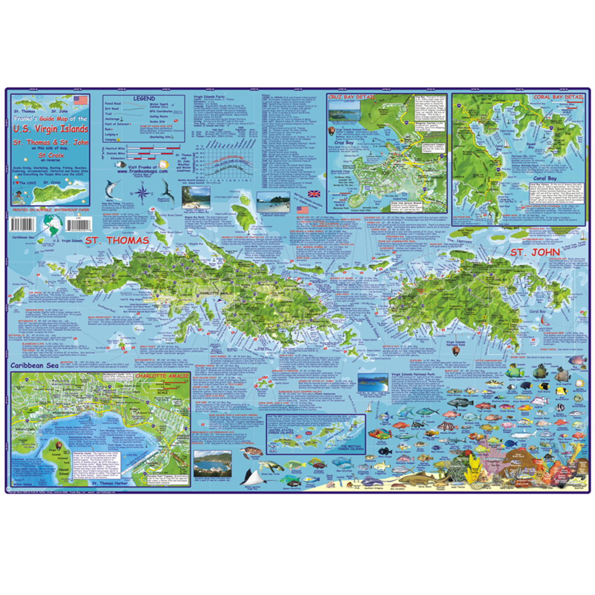 franko maps us virgin islands dive creature guide 185 x 26 inch