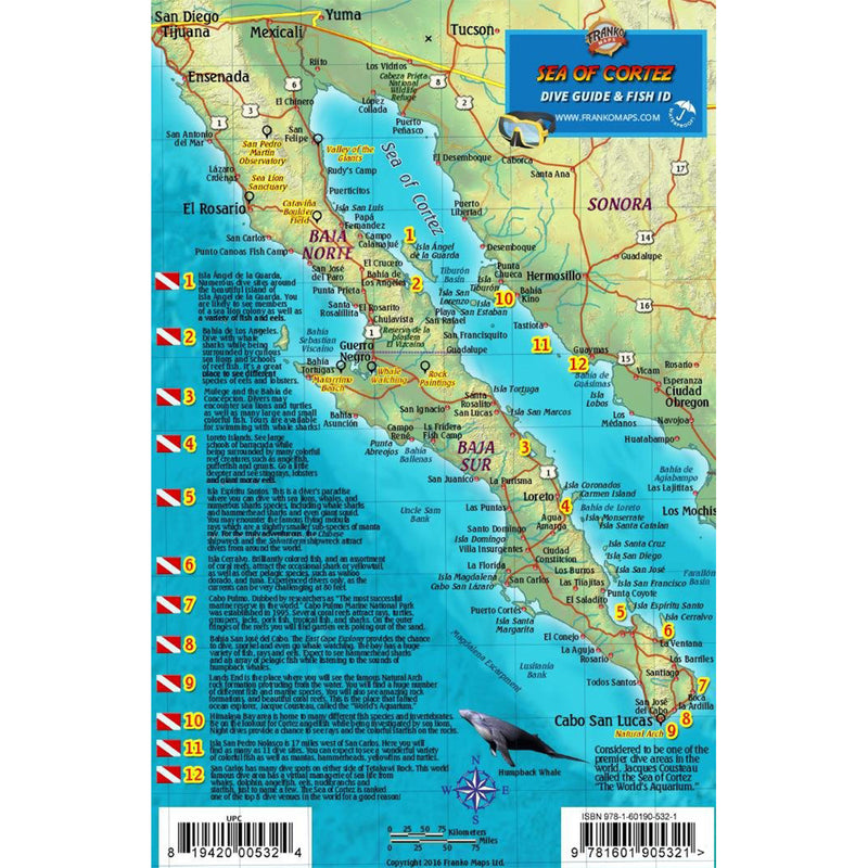 Franko Maps Baja Sea Of Cortez Dive Creature Guide 5.5 X 8.5 Inch