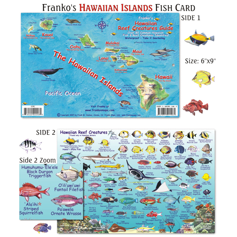 Franko Maps Hawaiian Islands Reef Creature Guide 6 X 9 Inch