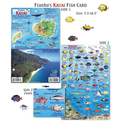 Franko Maps Hawaii Kauai Reef Dive Creature Guide 5.5 X 8.5 Inch