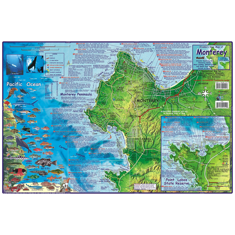 Franko Maps Monterey Bay Dive Creature Guide 14 X 21 Inch