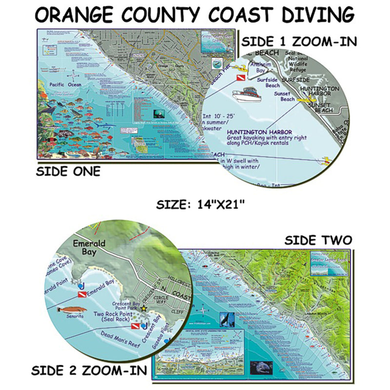 Franko Maps Orange County Coast Dive Creature Guide 14 X 21 Inch