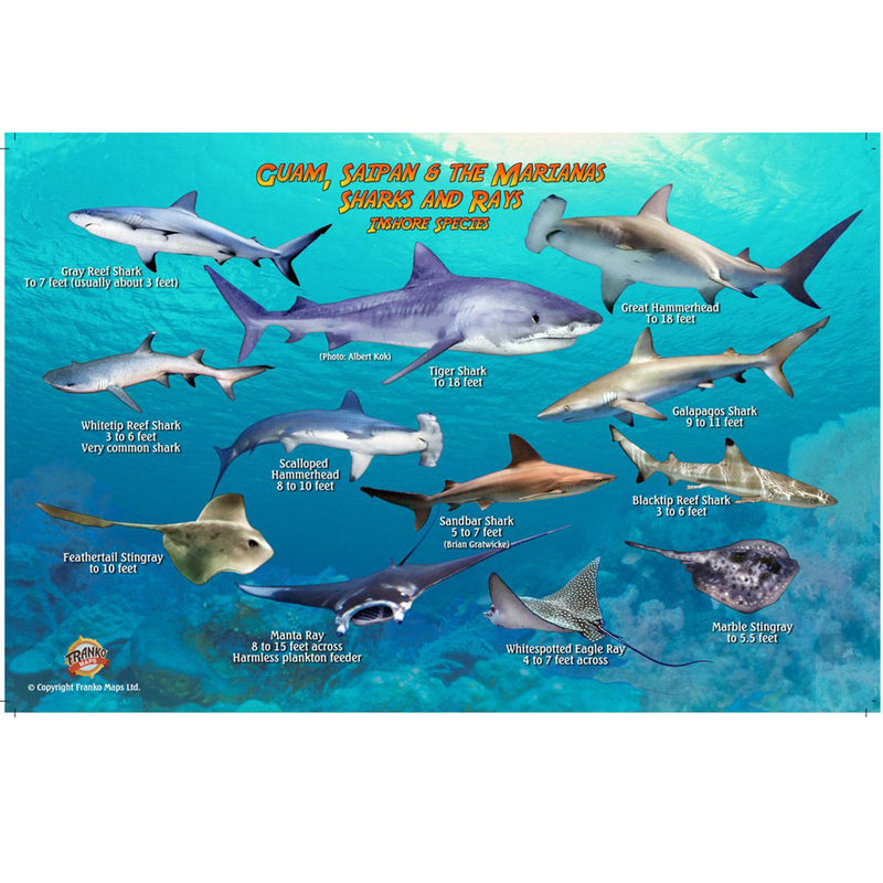 Franko Maps Guam Saipan Sharks Rays Creature Guide 5.5 X 8.5 Inch