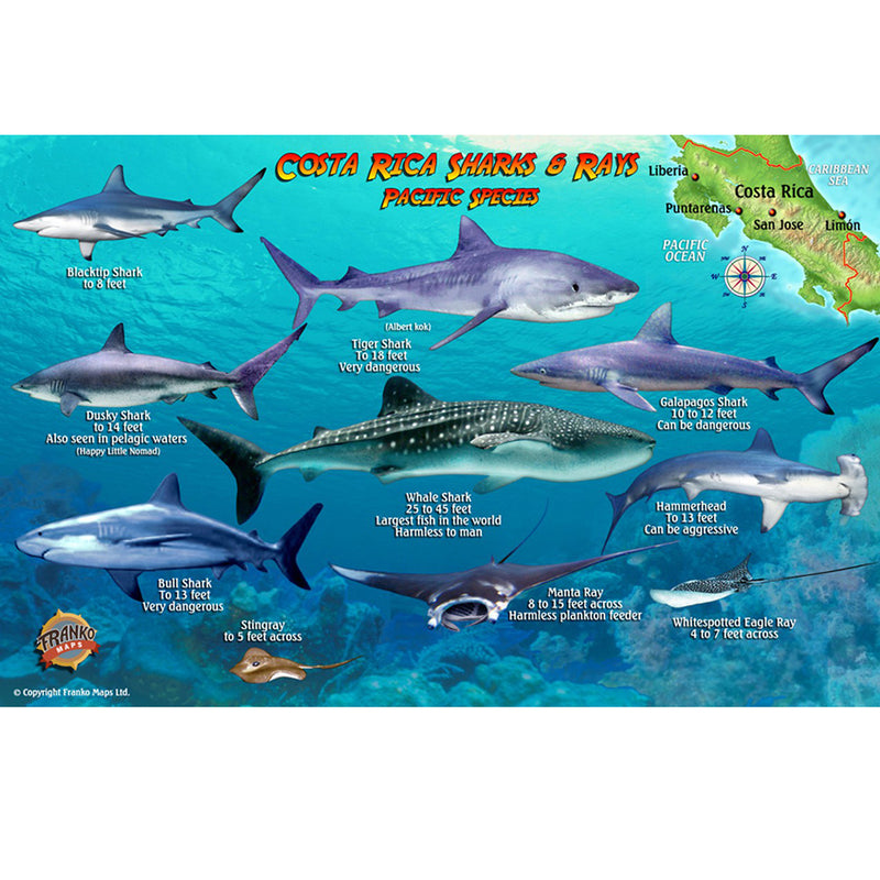 Franko Maps Costa Rica Sharks Rays Creature Guide 5.5 X 8.5 Inch