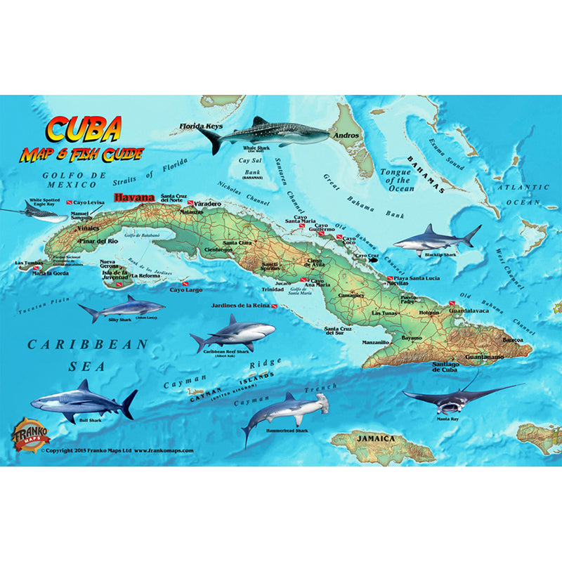 Franko Maps Cuba Reef Dive Creature Guide 5.5 X 8.5 Inch