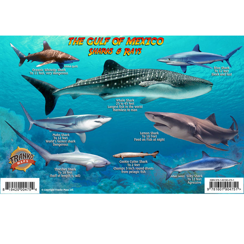 Franko Maps Gulf of Mexico Sharks Rays Creature Guide 5.5 X 8.5 Inch