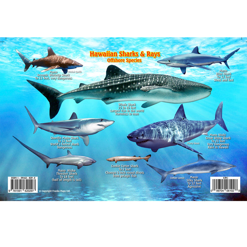 Franko Maps Hawaiian Sharks Rays Dive Creature Guide 5.5 X 8.5 Inch