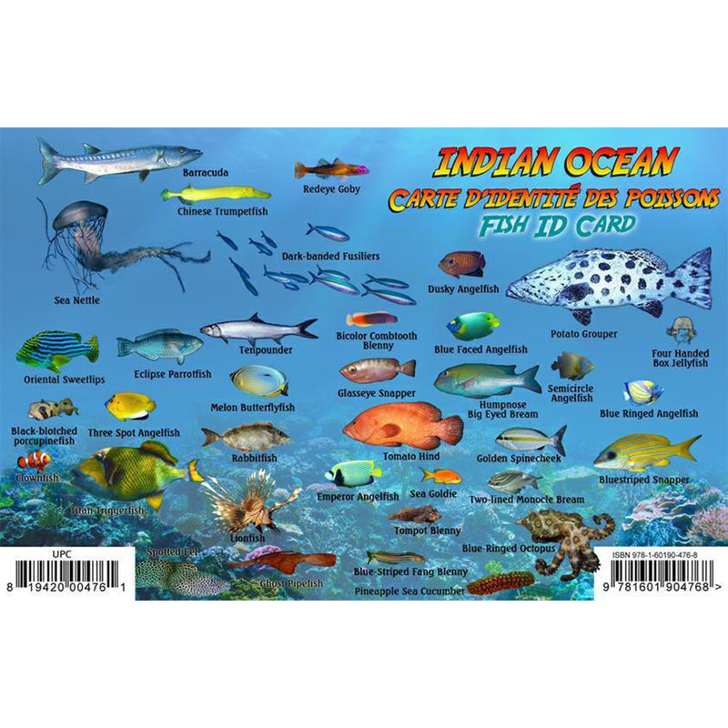 Franko Maps Indian Ocean Dive Creature Guide 5.5 X 8.5 Inch
