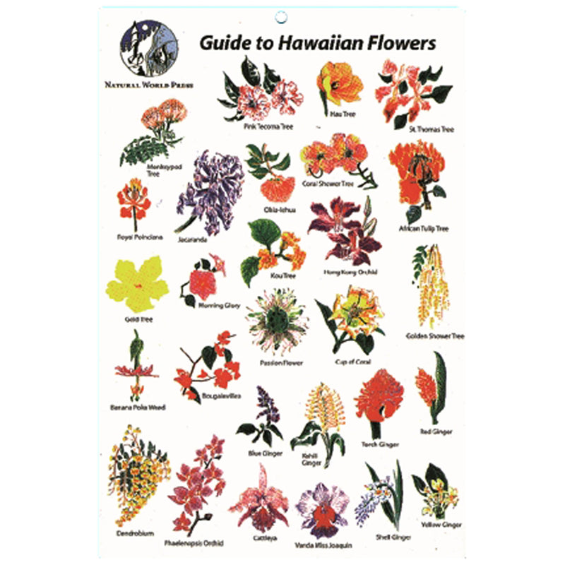 Hawaiian Flowers Id Card