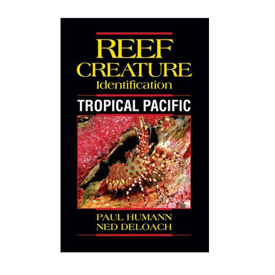 Reef Creatures Tropical Pacific