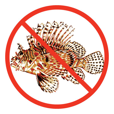 Trident 3 Inch No Lionfish Round Vinyl High Gloss Sticker