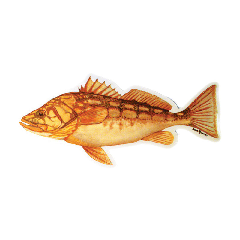 Calico Fish Decal