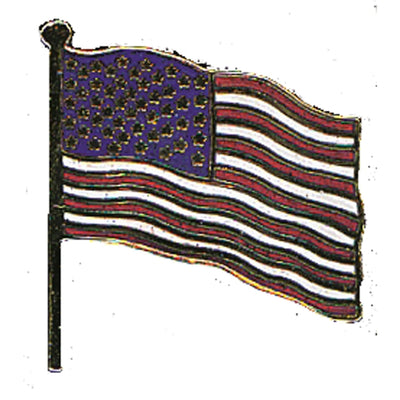 Usa Flag Pin