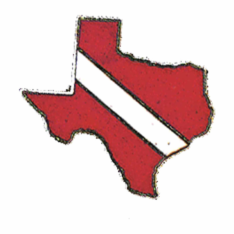 Texas State Pin
