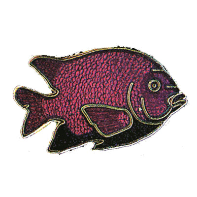 Garabaldi Fish Pin