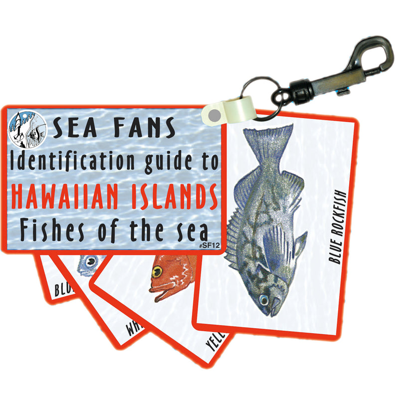 Waterproof Fish ID Fan Deck With Swiveling Snap Hook, Hawaii