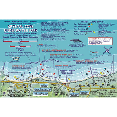 Franko Maps Crystal Cove Underwater Dive Creature Guide 5.5 X 8.5 Inch