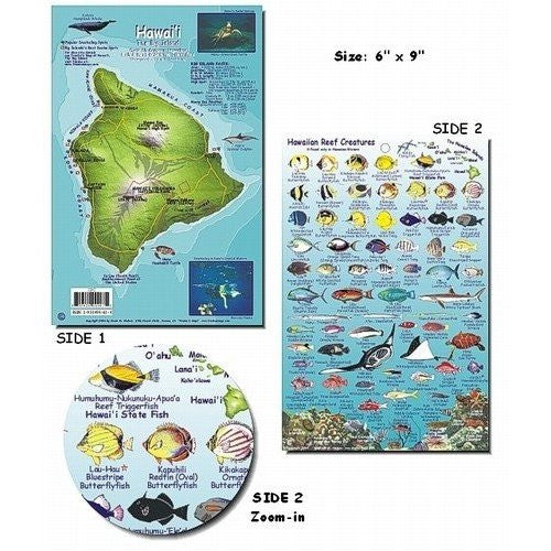 Franko Maps Big Island Hawaii Dive Creature Guide 5.5 X 8.5 Inch