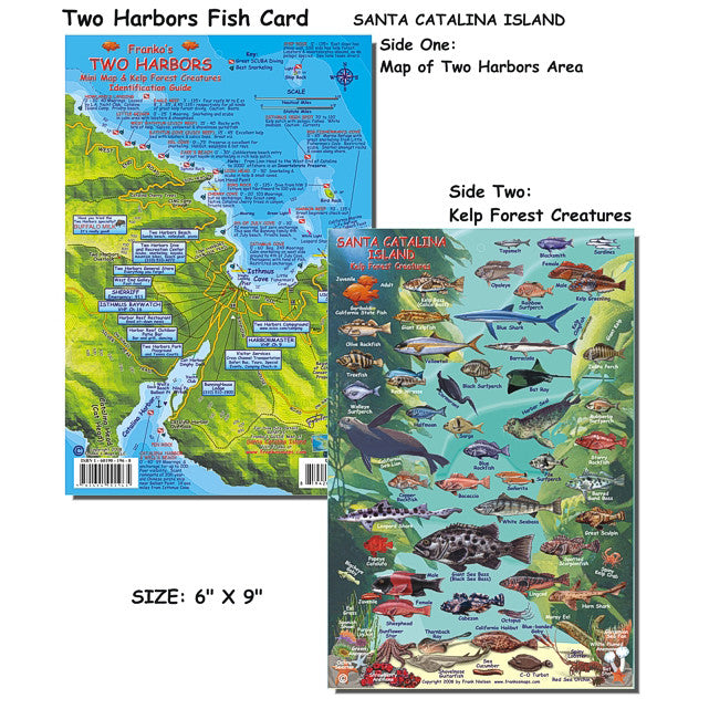 Franko Maps Two Harbors Catalina Dive Creature Guide 6 X 9 Inch