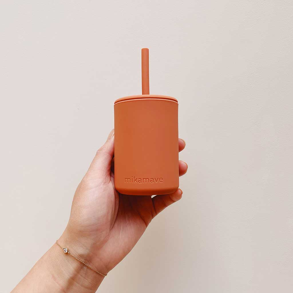 Silicone Straw Sippy cups & Lid