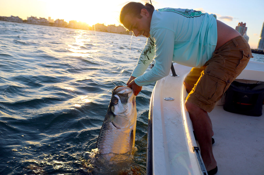 Sunset Miami Tarpon fishing