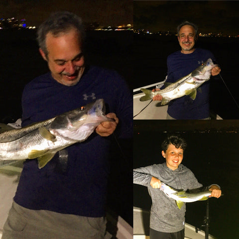 Father Son Snook, Miami Snook fishing