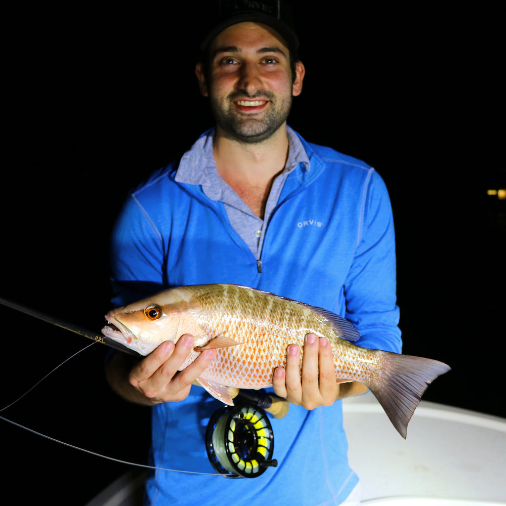 Miami Tarpon Fishing : Giant Mangove Snapper on Fly