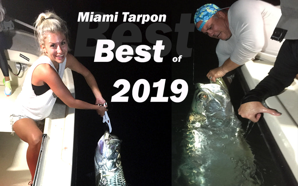 2019 Best Jumps and a Surprise bycatch when Miami Tarpon and Snook Fishing