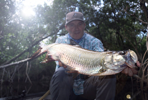 Tarpon and Snook Everglades City , Chokoloskee Eco Safari Adveture