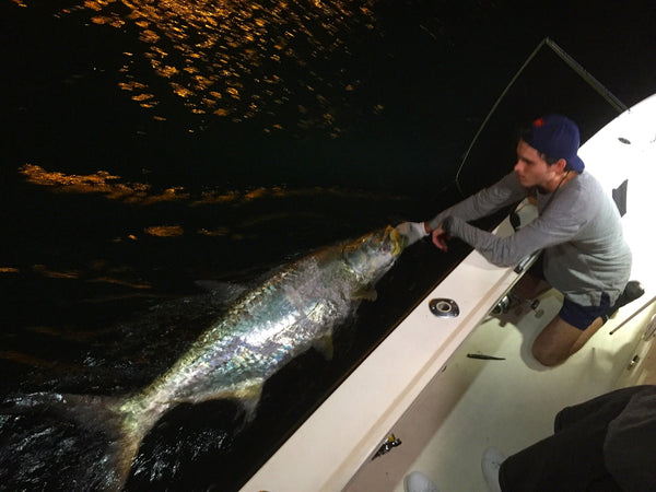 Miami Evening / Tarpon and Snook Fishing