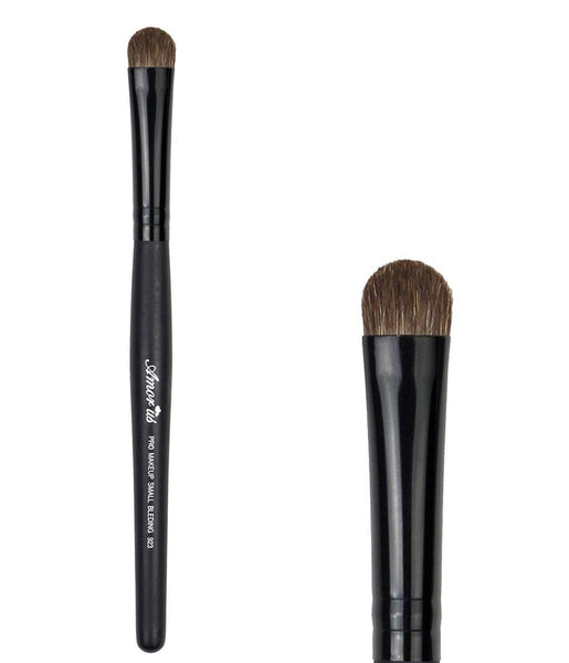 AM-BR923 : Professional Deluxe Large Shadow Brush 1 DZ