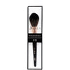 K12 : Pointed Powder Brush 6 PC