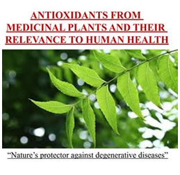PLANTS ANTIOXIDANT ATHLETES GEL