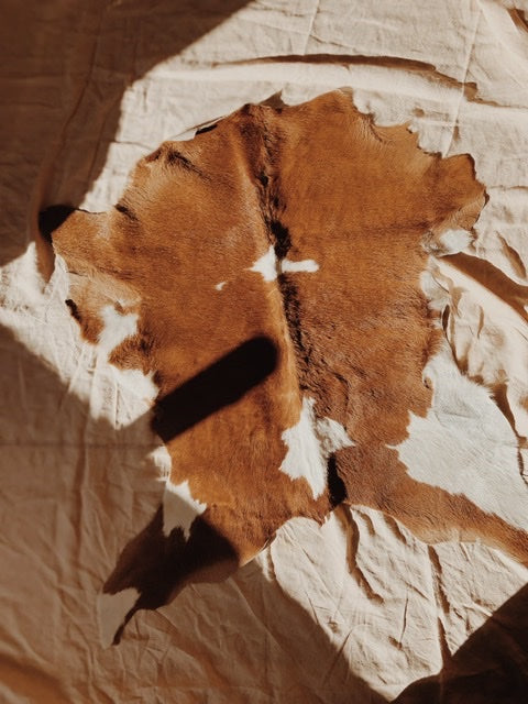 Small Cowhide Rug