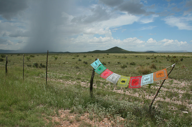 Desert Prayer Flags