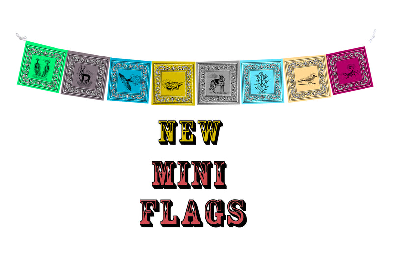NEW!! MINI Desert Prayer Flags