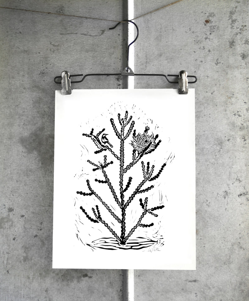 11x14 Cholla relief print