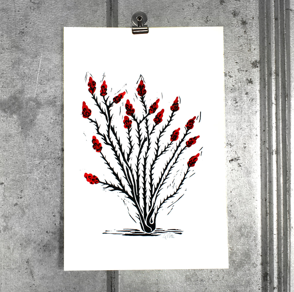 Small ocotillo screen print on 12x18 paper