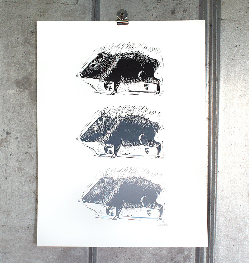Triple Javelina on 18x24 paper