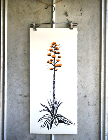 Ocotillo on vintage metal